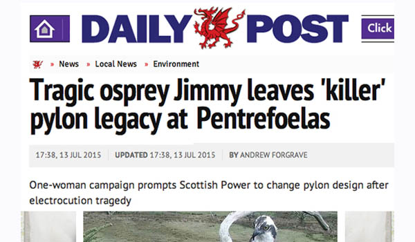 Article by North Wales Daily Post entitled 'Tragic Osprey leaves Killer Pole Legacy