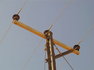 showing the construction of the lethal powerline which electrocuted hundreds of vultures