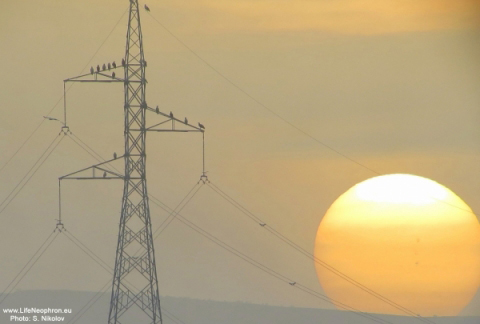 new pylons with the rising sun photographed by S Nikolov