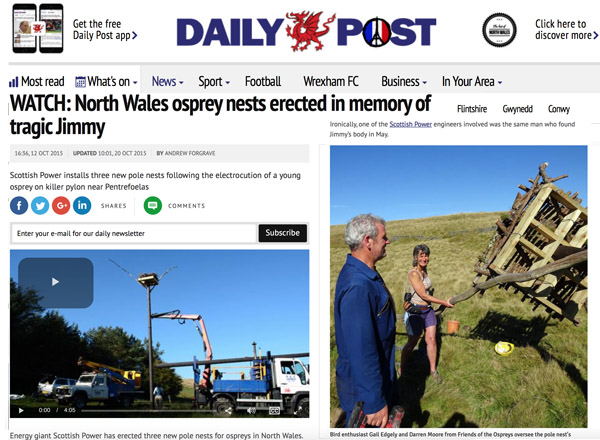 Daily Post online page giving opportunity to watch one of the Osprey Pole Nests being erected